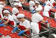HACCP Corsi Liguria